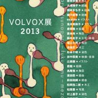 VOLVOX展 2013