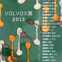 VOLVOX展2013のDMは…