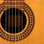 秋の午後、豊かな弦の爪弾き音に耳を傾けてみる
